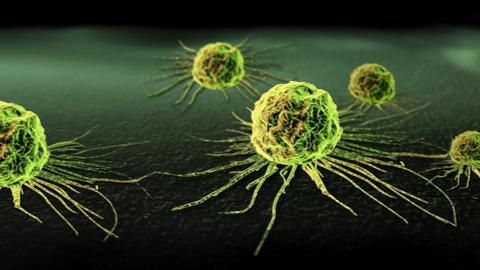 effects of cbd on cancer