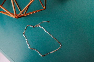 Silver Disk Choker Necklace