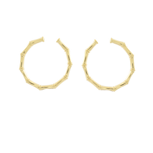 Load image into Gallery viewer, Golden Knot Earrings