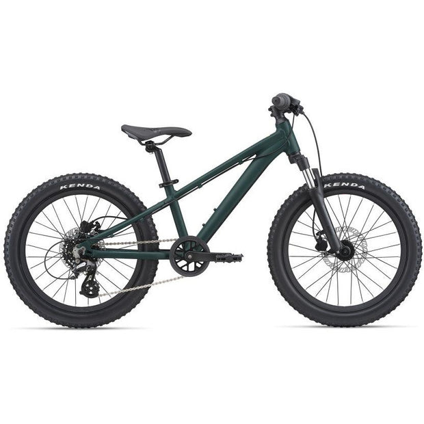 2021 Giant STP 20 FS Kids Bike, Green, Full View