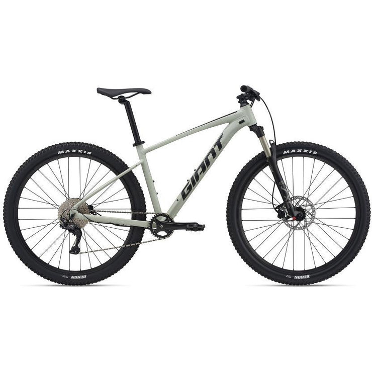 2021 Giant Talon 29 1 (Desert Sage) Full View