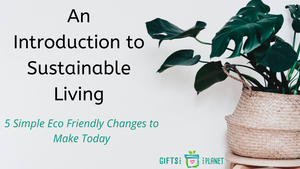 An Introduction to Sustainable Living