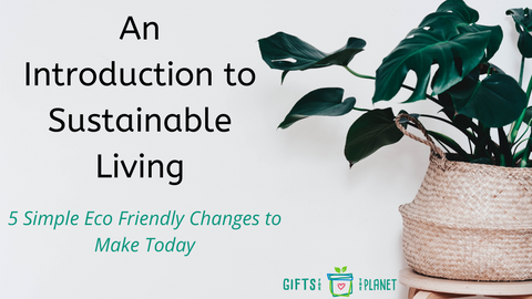 An Introduction to sustainable living - 5 easy steps to an eco lifestyle
