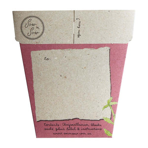 Mother's Day Card & Flowers Gift of Seeds - Chrysanthemum