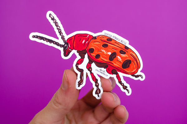 Sticker: Spotted Asparagus Beetle