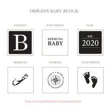 Load image into Gallery viewer, SALE! 2020 Origins Baby Block