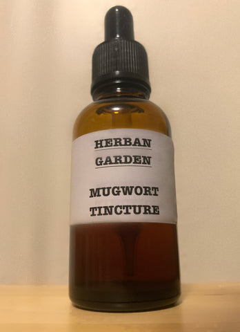 Mugwort Tincture (Artemisia vulgaris) - 1 fl oz (30 ml)