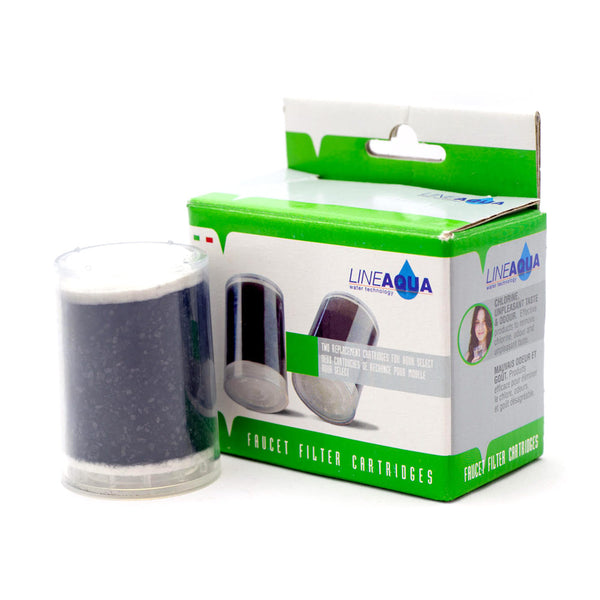 Replacement Filters Twin Pack