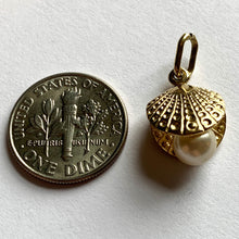Load image into Gallery viewer, 9K Yellow Gold Cultured Pearl Oyster Charm Pendant
