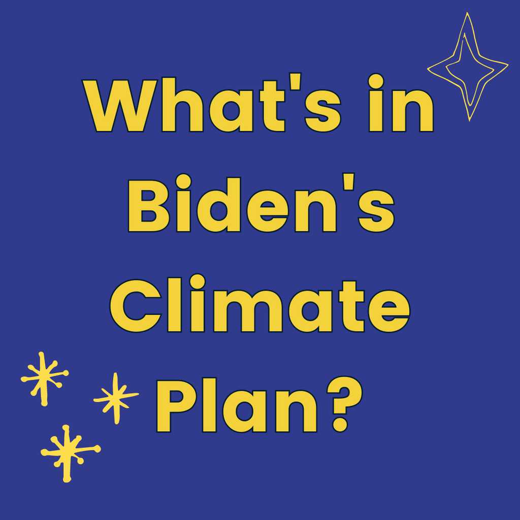 What's in Biden's Climate Plan?