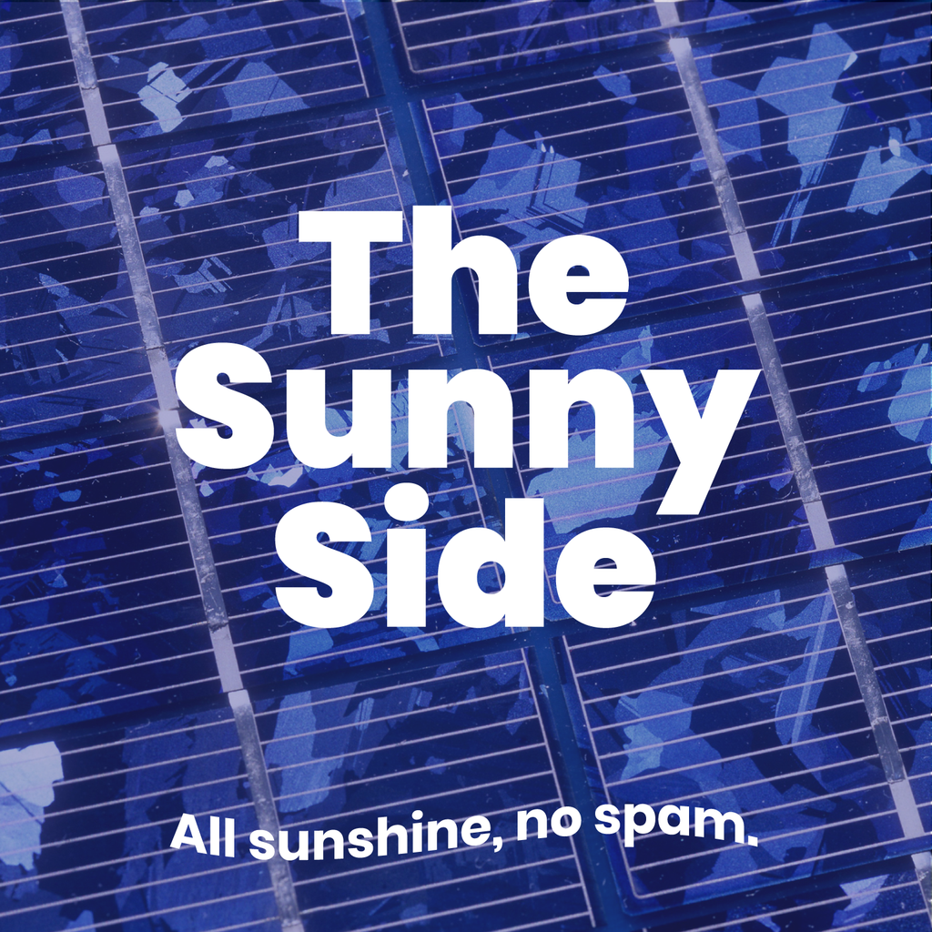 Officially launching our blog: The Sunny Side