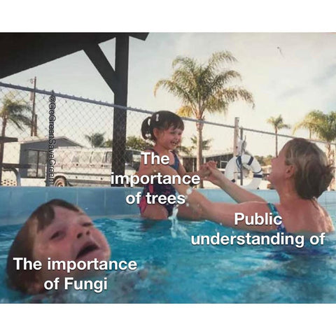 Public understanding of... The importance of trees, The importance of Fungi.