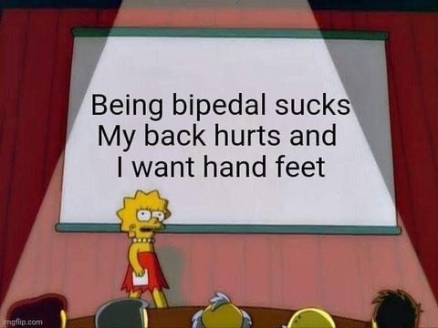 Being bipedal sucks My back hurts and I want hand feet