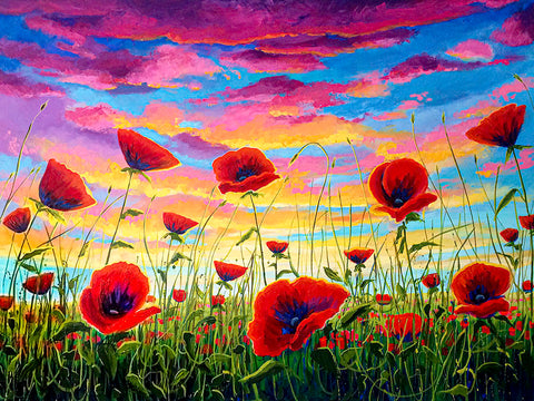 The Melody of the Swirling Vortex and the Sunset Poppies