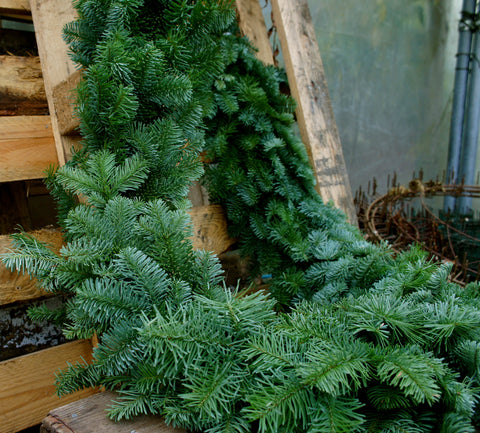 Fresh fir garland