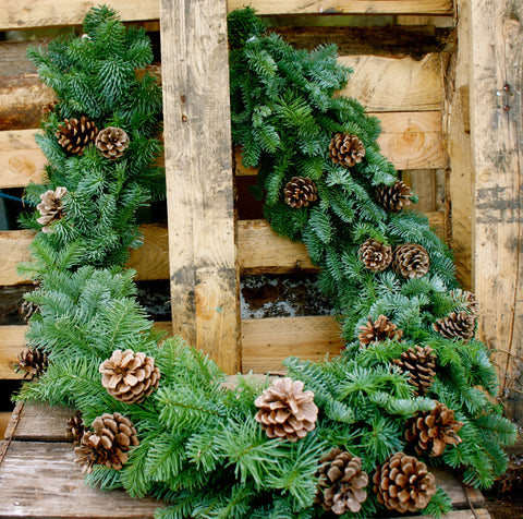 Fresh fir garland with pine cones