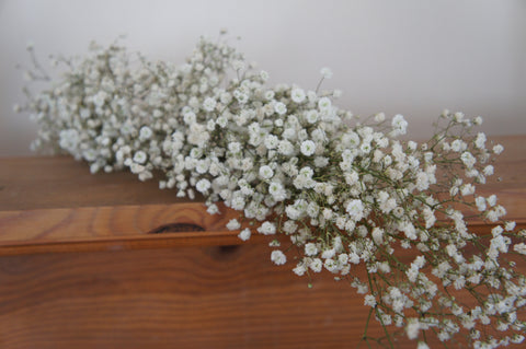 Fresh gypsophila garland