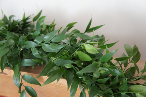 Soft ruscus foliage garland