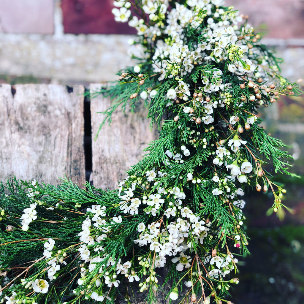 waxflower garland ideal for weddings