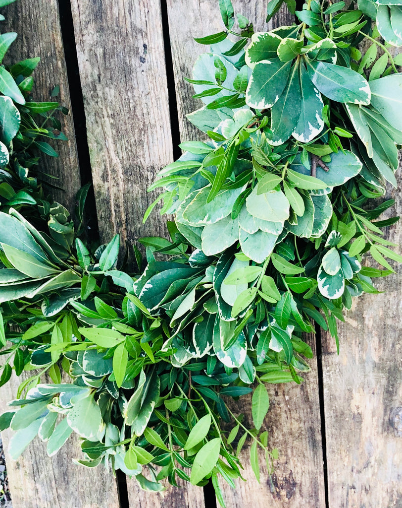Pistache and pittosporum fresh garland