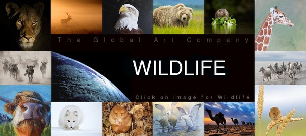 Wildlife Art and Photography - The Global Art Company