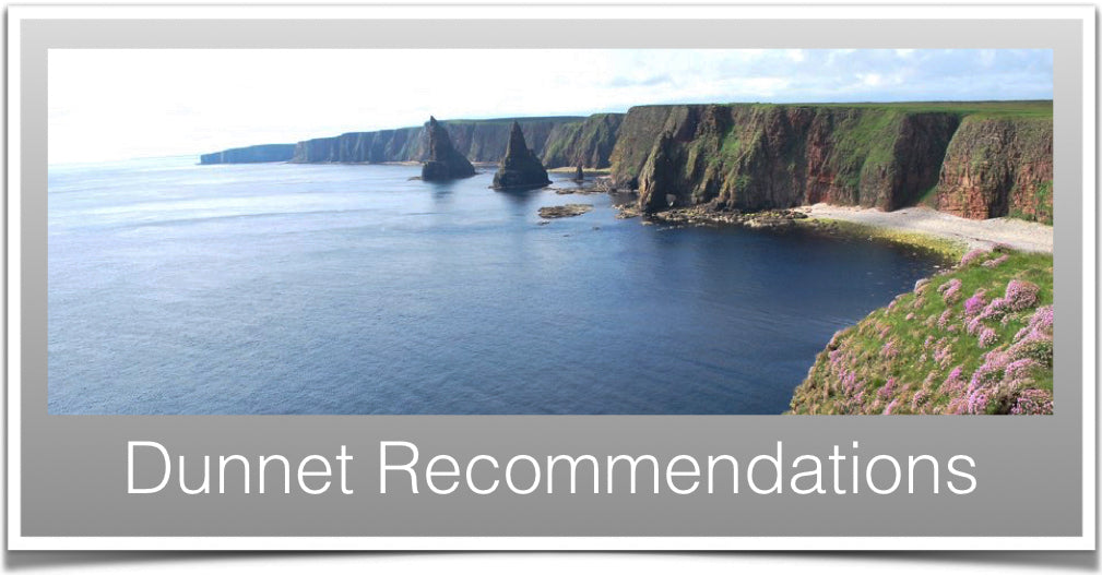 Dunnet Recommendations