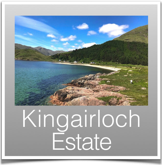 Kingairloch Estate