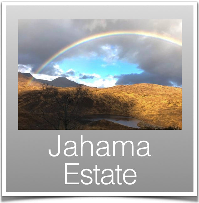 Jahama Estate