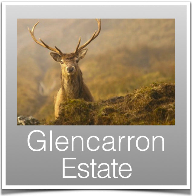 Glencarron Estate