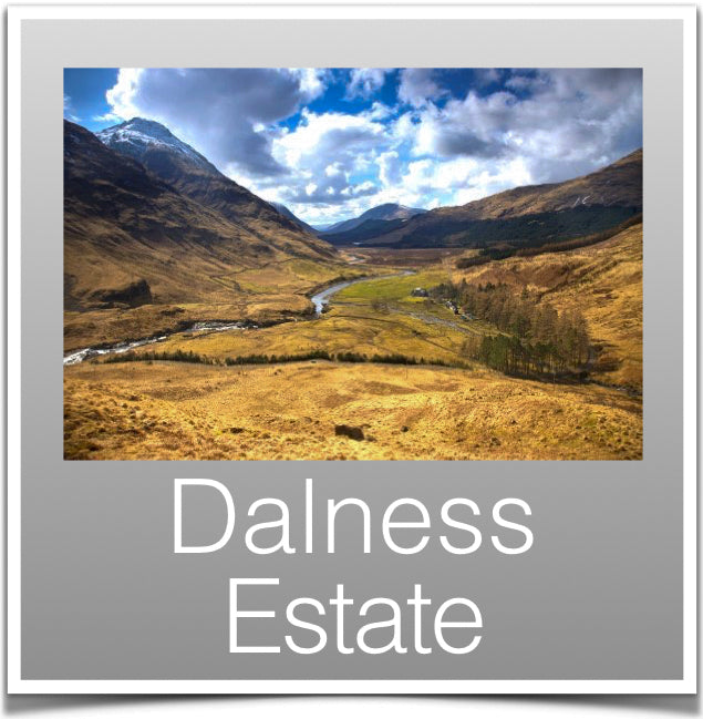 Dalness Estate