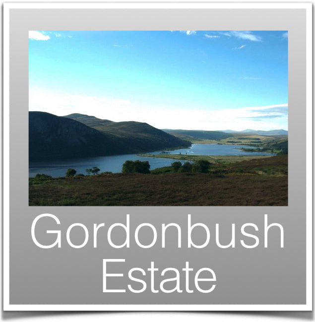 Gordonbush Estate