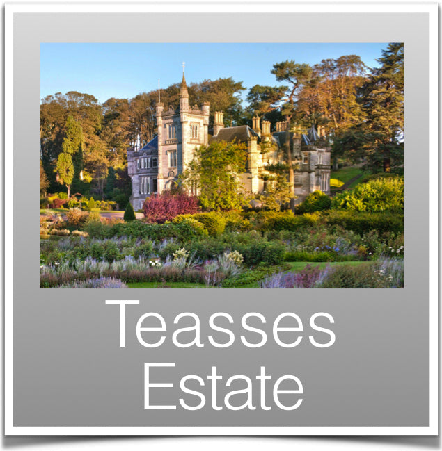 Teasses Estate
