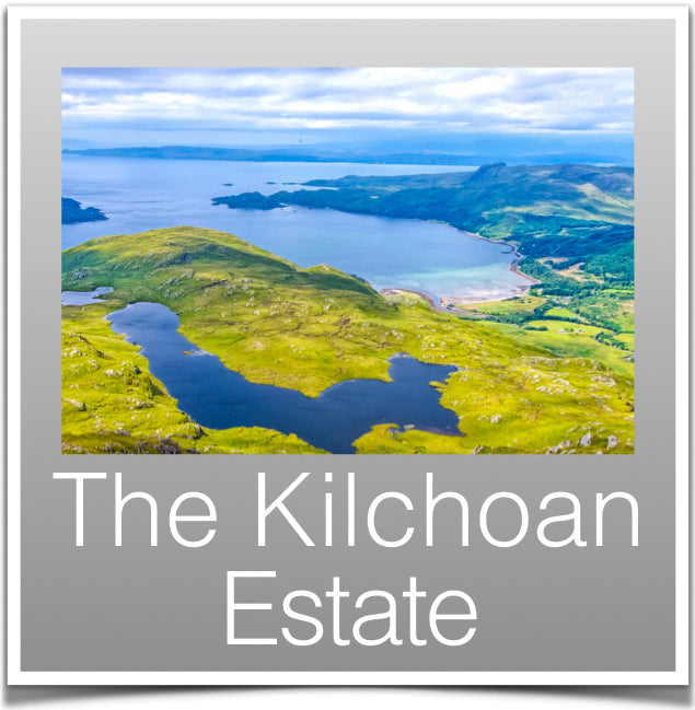 The Kilchoan Estate