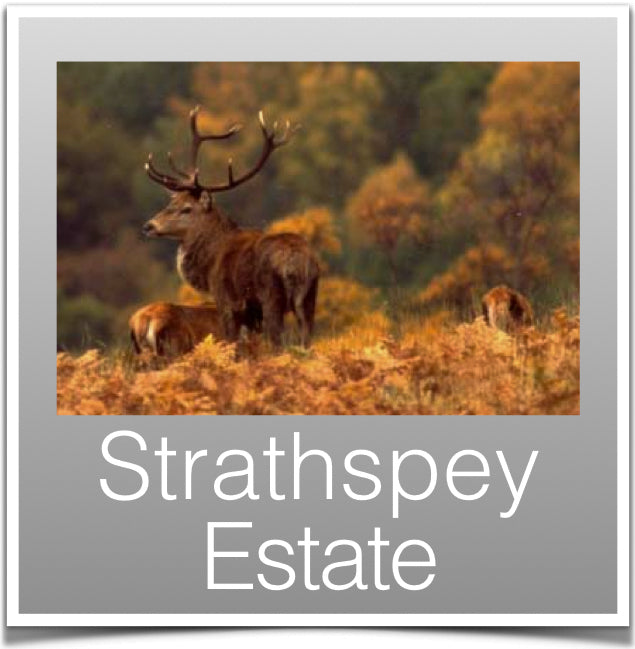 Strathspey Estate