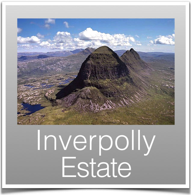 Inverpolly Estate