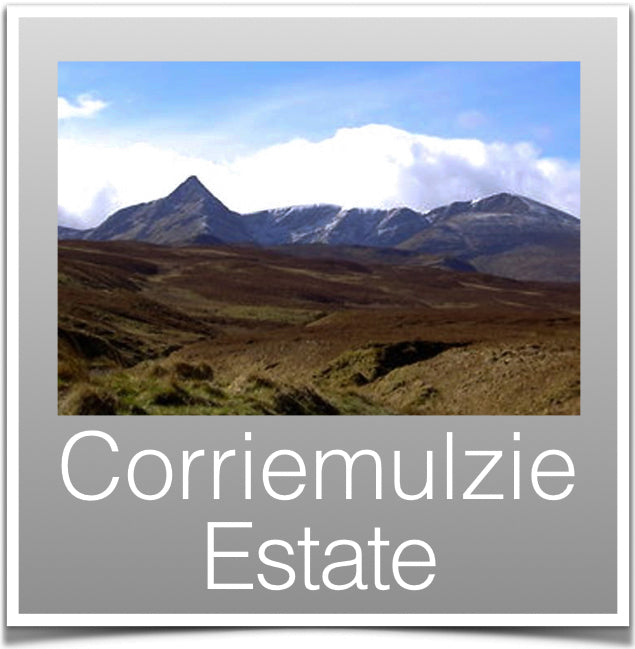 Corriemulzie Estate