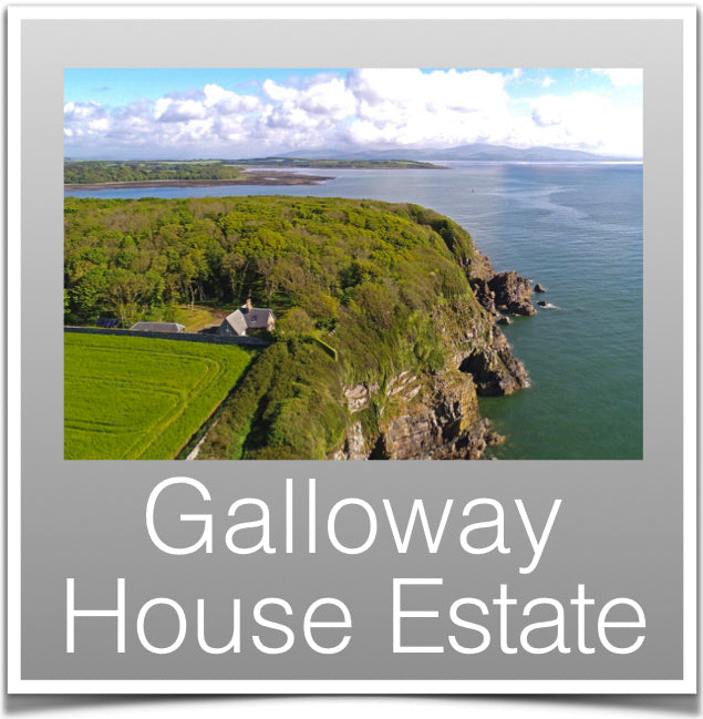 Galloway House Estate
