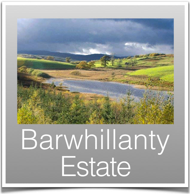 Barwhillanty Estate