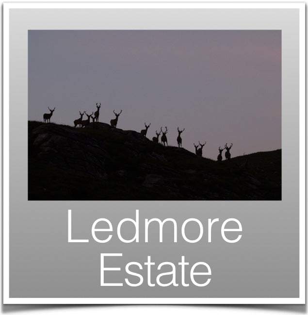Ledmore Estate