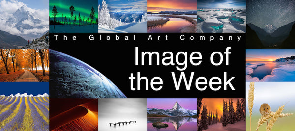 The Image of the Week Art Collection - The Global Art Company