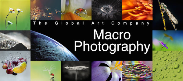 The Macro Photography collection - The Global Art Company