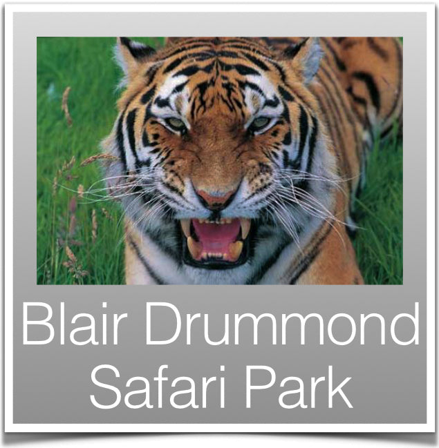 Blair Drummond Safari Park