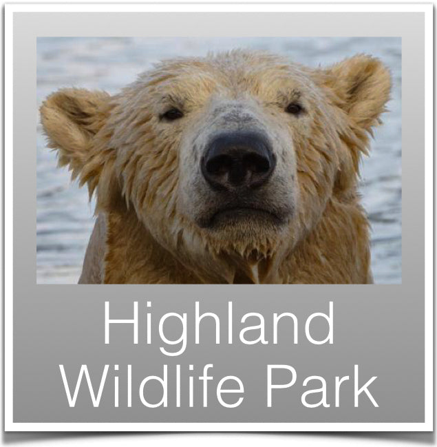 Highland Wildlife Park