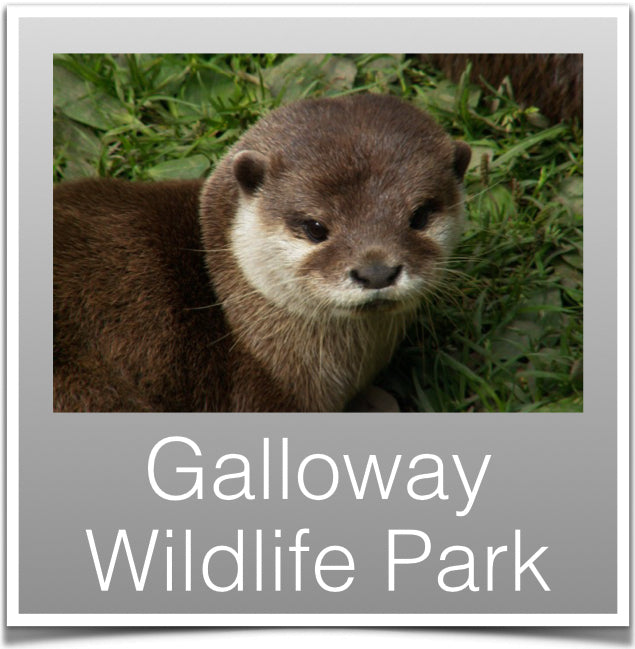 Galloway Wildlife Park