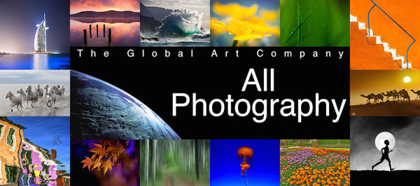 The World Photography Gallery on The Global Art Company