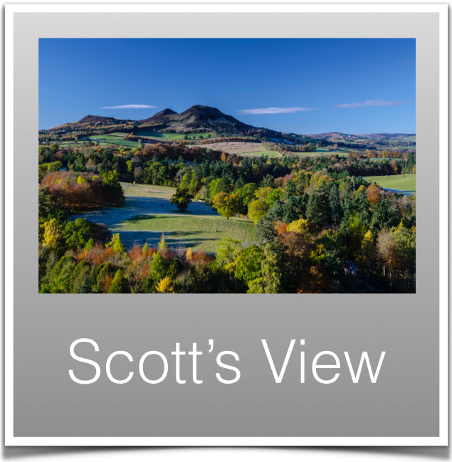 Scotts View