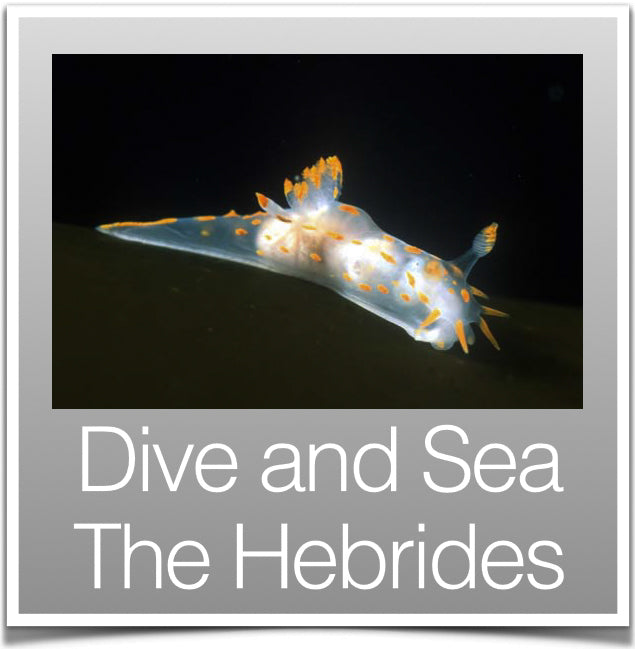 Dive and Sea The Hebrides