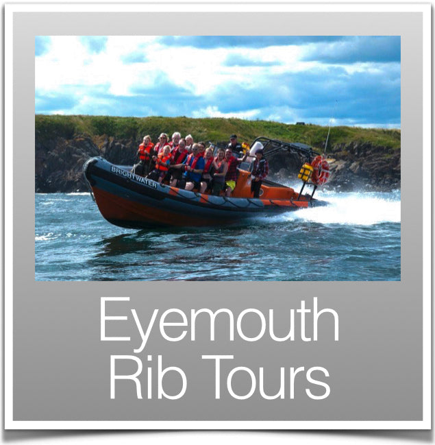 Eyemouth Rib Tours