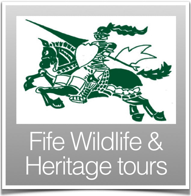 fife Wildlife & Heritage Tours