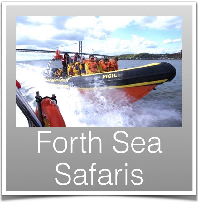 Forth Sea Safaris